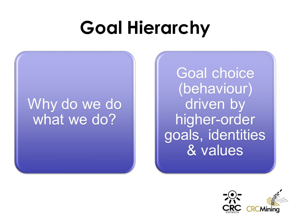 Goal Hierarchy Why do we do what we do.