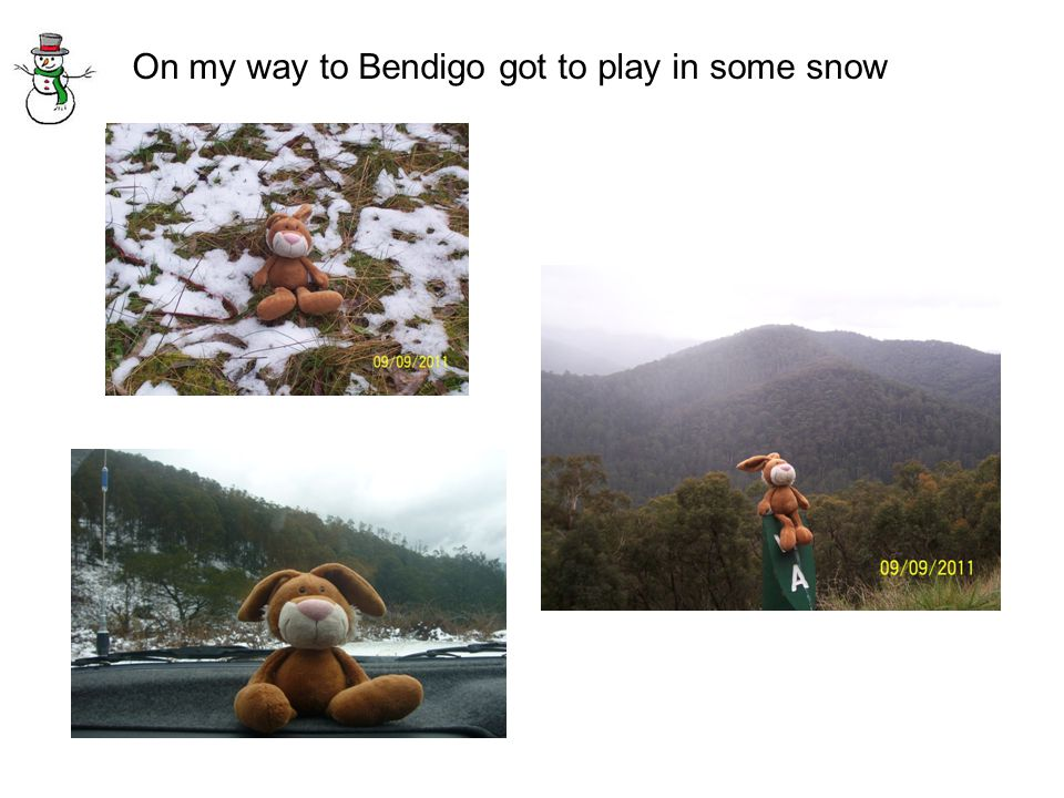 On my way to Bendigo got to play in some snow