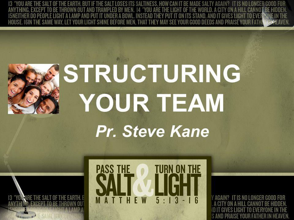 STRUCTURING YOUR TEAM Pr. Steve Kane