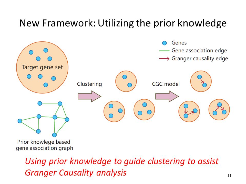 New Framework: Utilizing the prior knowledge Using prior knowledge to guide clustering to assist Granger Causality analysis 11