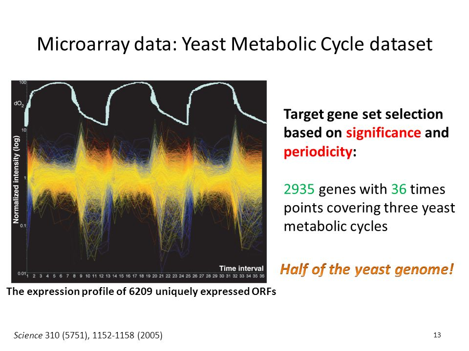 Microarray data: Yeast Metabolic Cycle dataset Science 310 (5751), 1152-1158 (2005) Target gene set selection based on significance and periodicity: 2935 genes with 36 times points covering three yeast metabolic cycles The expression profile of 6209 uniquely expressed ORFs 13