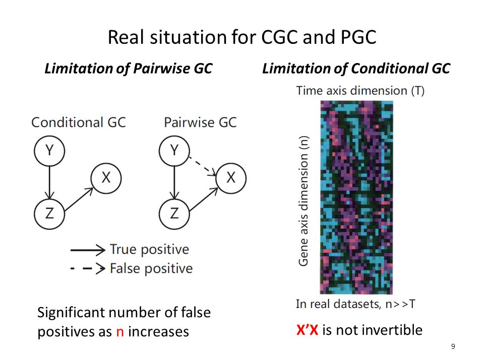 Real situation for CGC and PGC Limitation of Pairwise GCLimitation of Conditional GC 9 X'X is not invertible Significant number of false positives as n increases