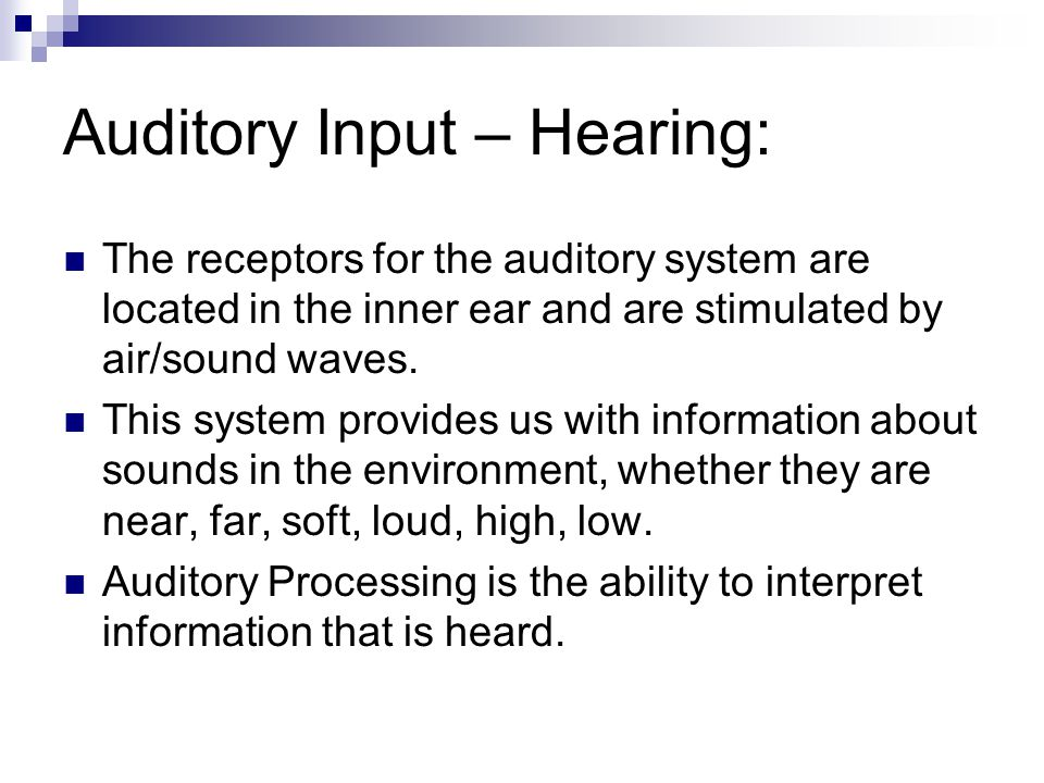 Auditory Input – Hearing: The receptors for the auditory system are located in the inner ear and are stimulated by air/sound waves.