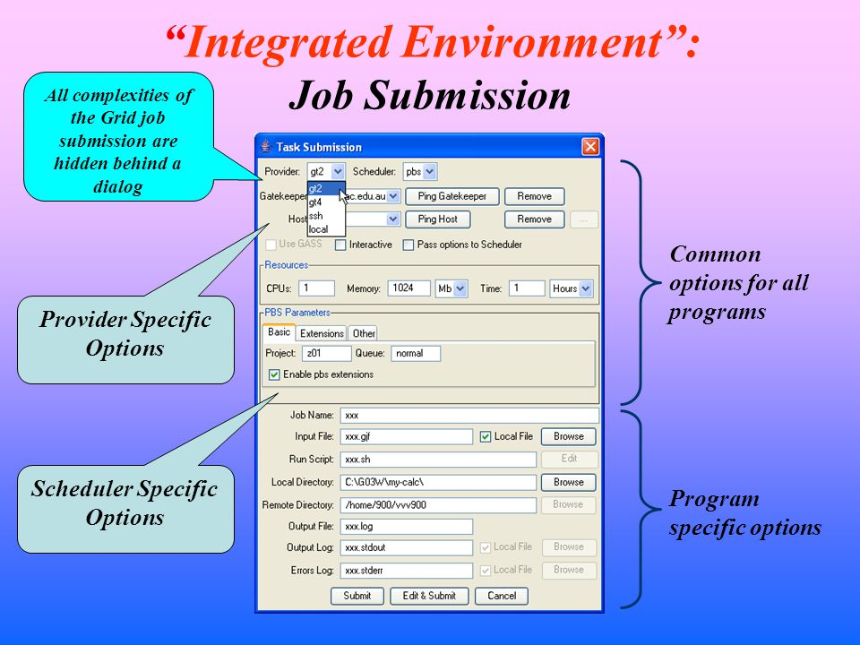 Integrated Environment : Job Submission Common options for all programs Program specific options Provider Specific Options Scheduler Specific Options All complexities of the Grid job submission are hidden behind a dialog