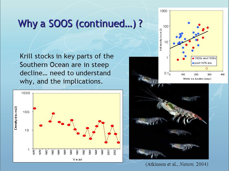 Krill stocks in key parts of the Southern Ocean are in steep decline… need to understand why, and the implications. (Atkinson et al., Nature, 2004) Wh