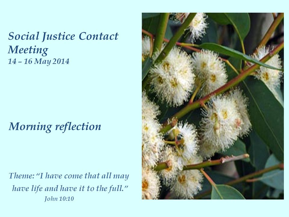 Morning reflection Theme: I have come that all may have life and have it to the full. John 10:10 Social Justice Contact Meeting 14 – 16 May 2014