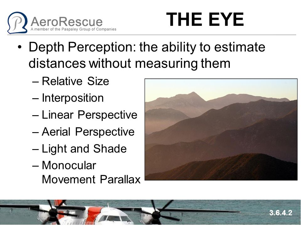 THE EYE Depth Perception: the ability to estimate distances without measuring them –Relative Size –Interposition –Linear Perspective –Aerial Perspecti
