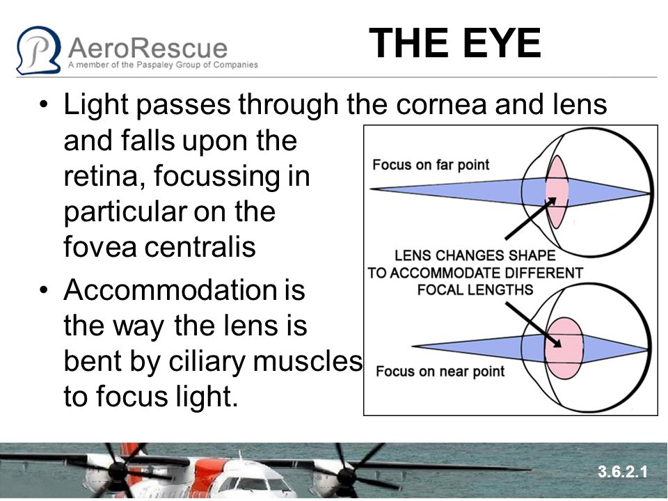 THE EYE Rods and Cones are photoreceptors that detect light –Cones detect colour and detail – day/central vision –Rods detect low light levels and movement night/peripheral vision Rhodopsin and Iodopsin are two chemicals that help in light detection.