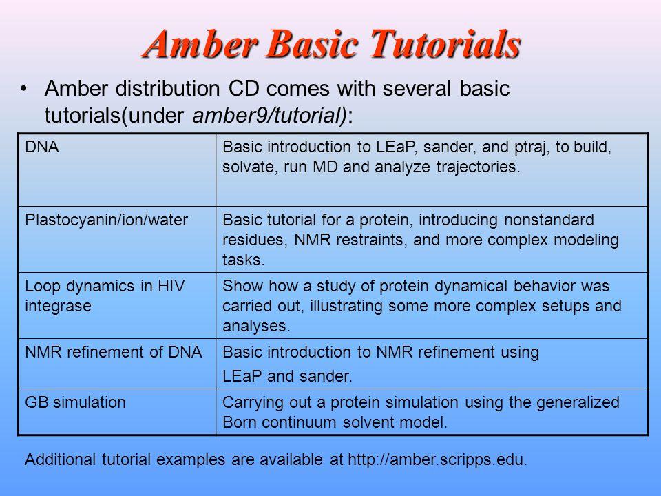 Amber Basic Tutorials Amber distribution CD comes with several basic tutorials(under amber9/tutorial): DNABasic introduction to LEaP, sander, and ptra