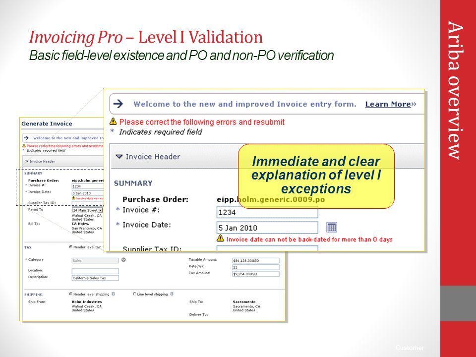 Customer Invoicing Pro – Level I Validation Basic field-level existence and PO and non-PO verification Immediate and clear explanation of level I exce