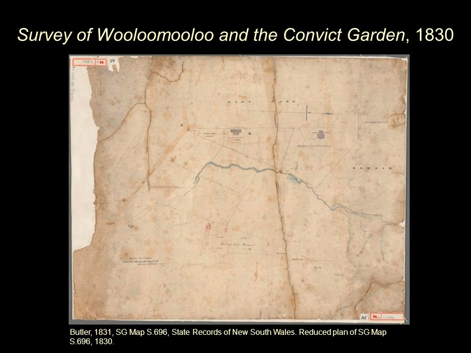 Survey of Wooloomooloo and the Convict Garden, 1830 Butler, 1831, SG Map S.696, State Records of New South Wales.