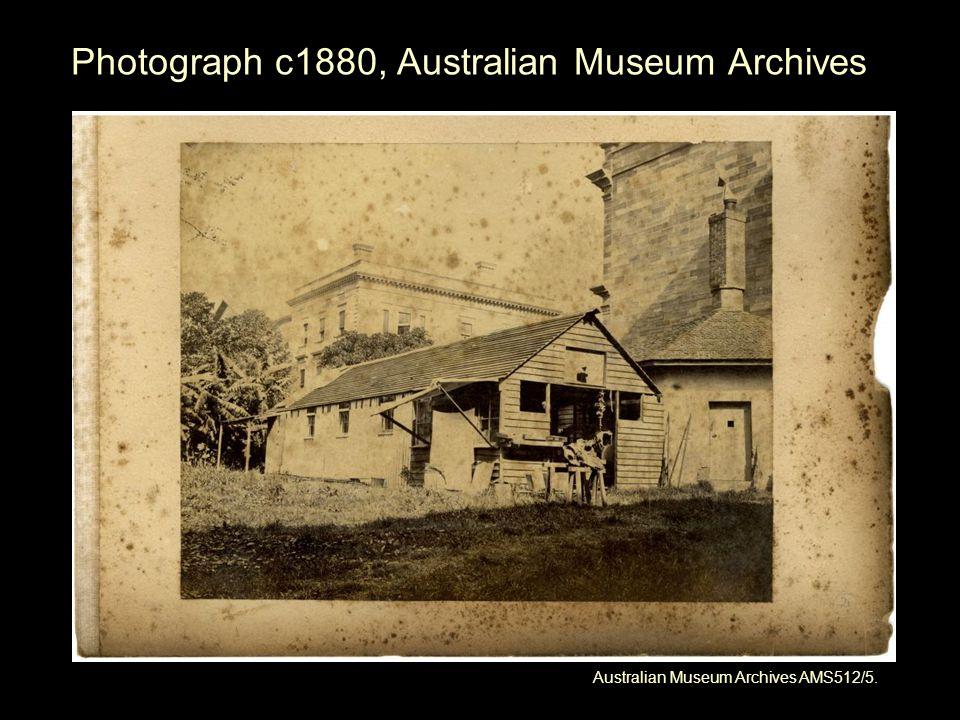 Photograph c1880, Australian Museum Archives Australian Museum Archives AMS512/5.