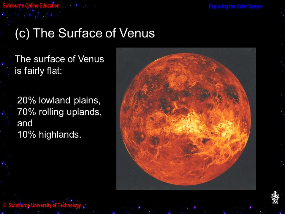 (c) The Surface of Venus The surface of Venus is fairly flat: 20% lowland plains, 70% rolling uplands, and 10% highlands.