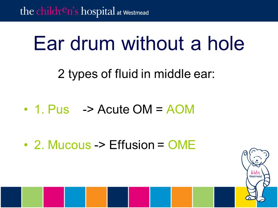 Ear drum without a hole 2 types of fluid in middle ear: 1.
