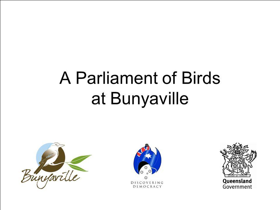 A Parliament of Birds at Bunyaville
