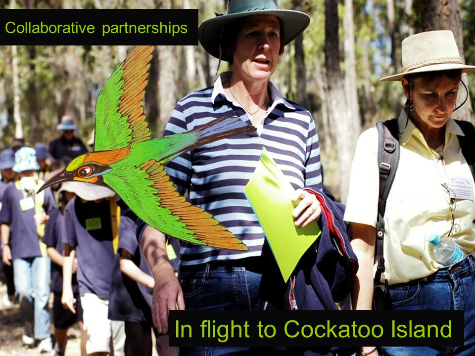 In flight to Cockatoo Island Collaborative partnerships