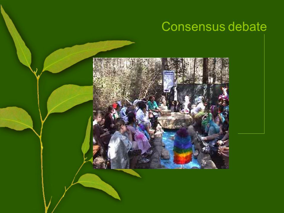Consensus debate