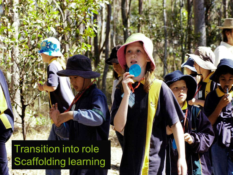 Transition into role Scaffolding learning