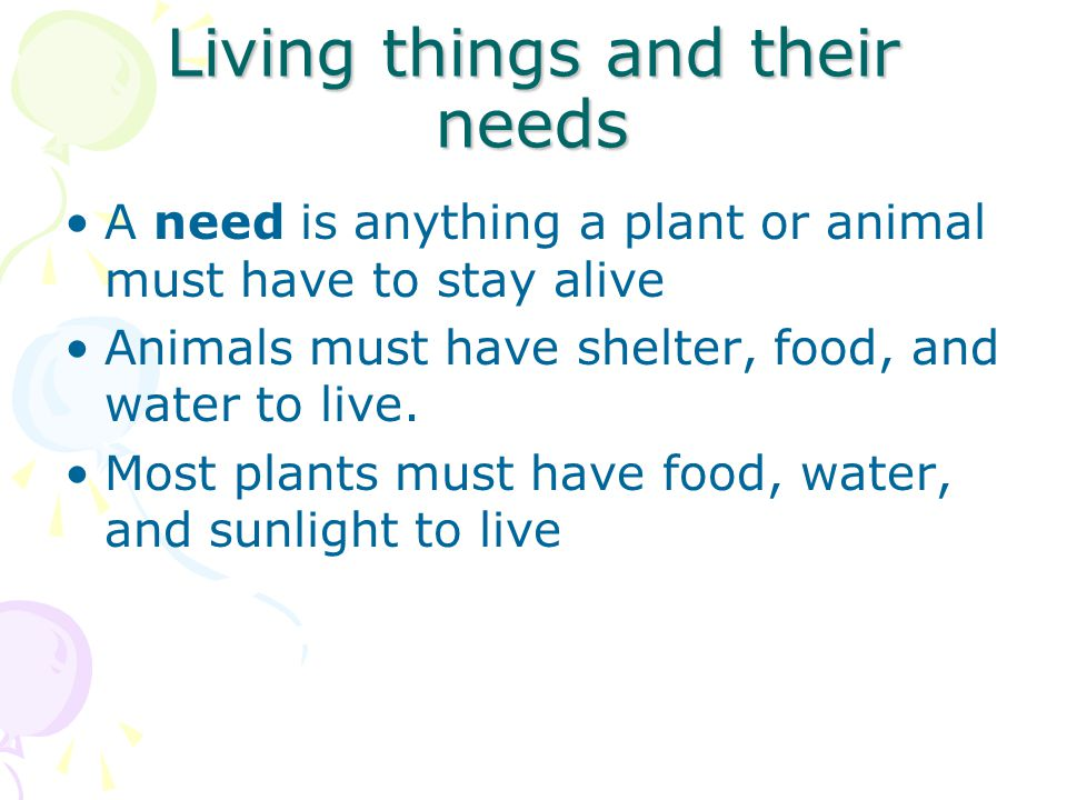 Living things and their needs A need is anything a plant or animal must have to stay alive Animals must have shelter, food, and water to live. Most pl
