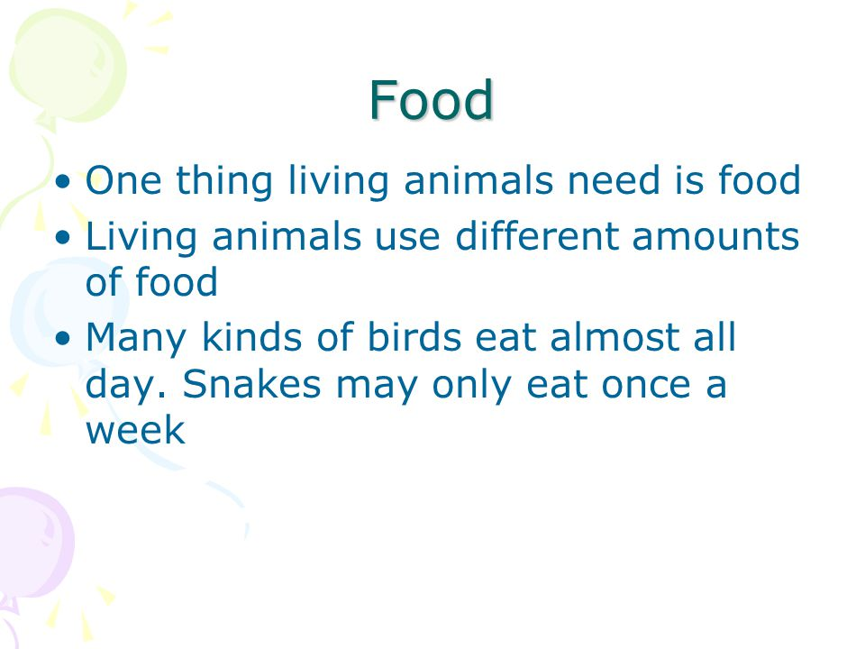 Food One thing living animals need is food Living animals use different amounts of food Many kinds of birds eat almost all day. Snakes may only eat on