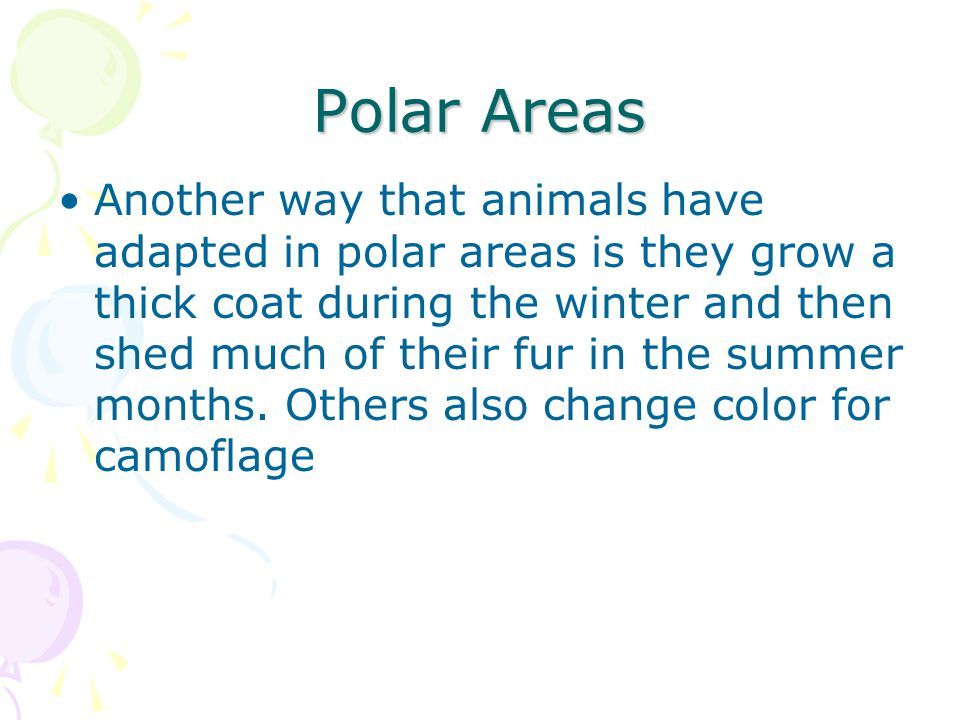 Polar Areas Another way that animals have adapted in polar areas is they grow a thick coat during the winter and then shed much of their fur in the su