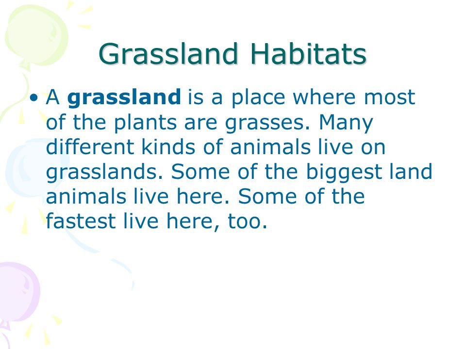 Grassland Habitats A grassland is a place where most of the plants are grasses. Many different kinds of animals live on grasslands. Some of the bigges