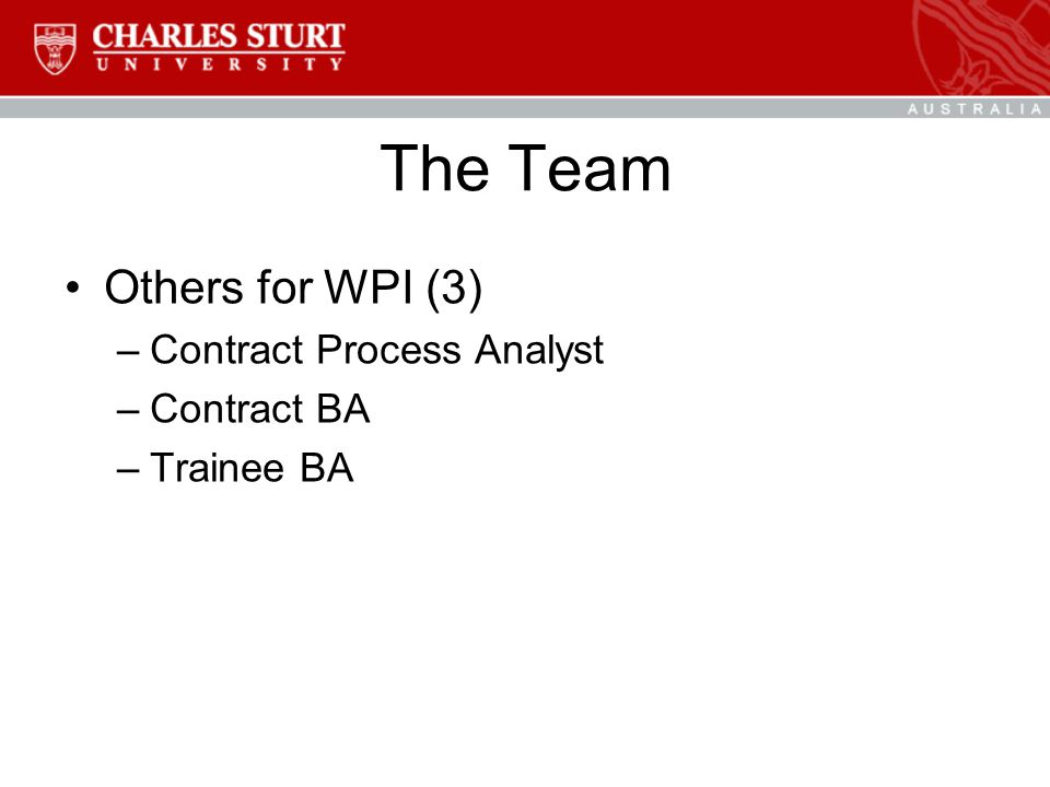 The Team Others for WPI (3) –Contract Process Analyst –Contract BA –Trainee BA