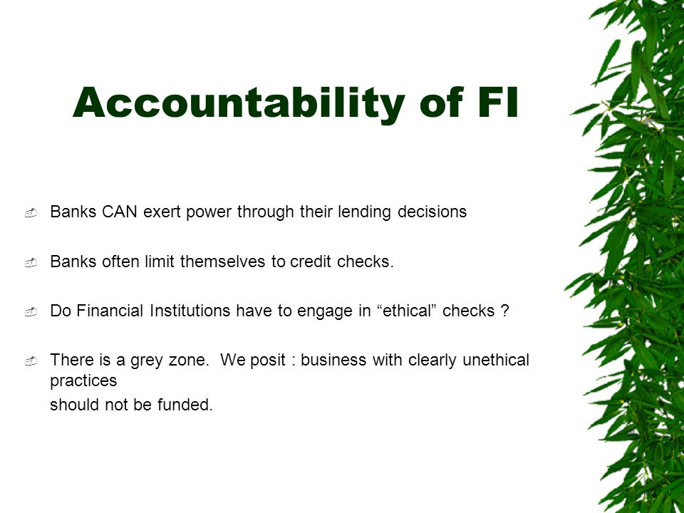 Accountability of FI  Banks CAN exert power through their lending decisions  Banks often limit themselves to credit checks.