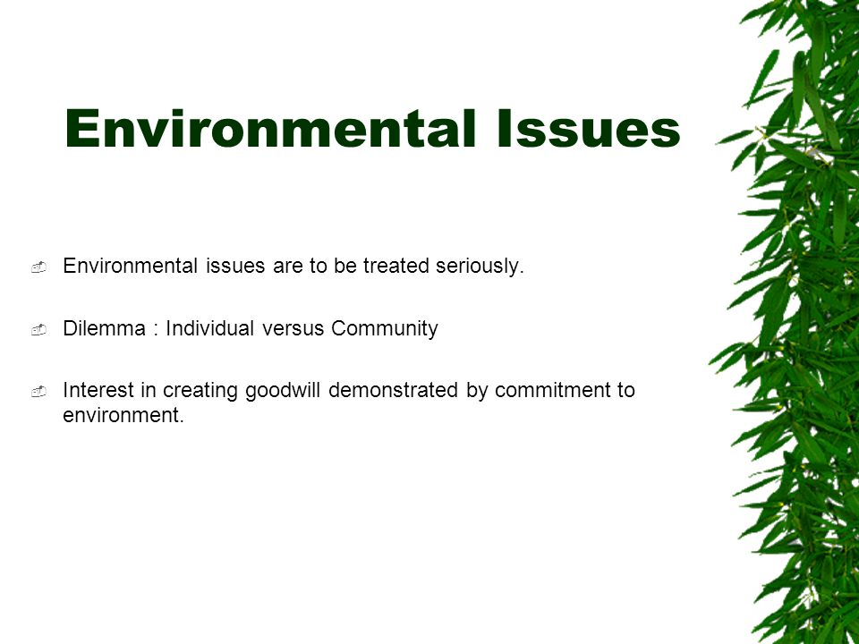 Environmental Issues  Environmental issues are to be treated seriously.