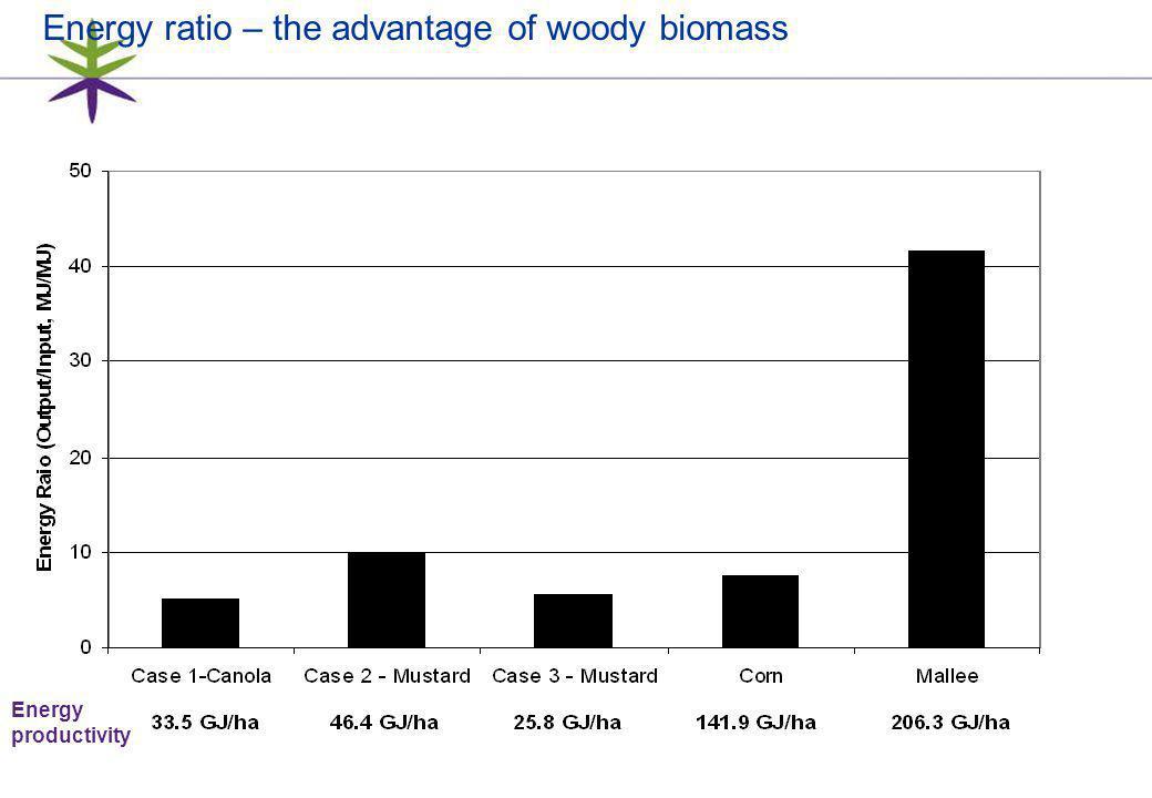 23 Energy ratio – the advantage of woody biomass Energy productivity