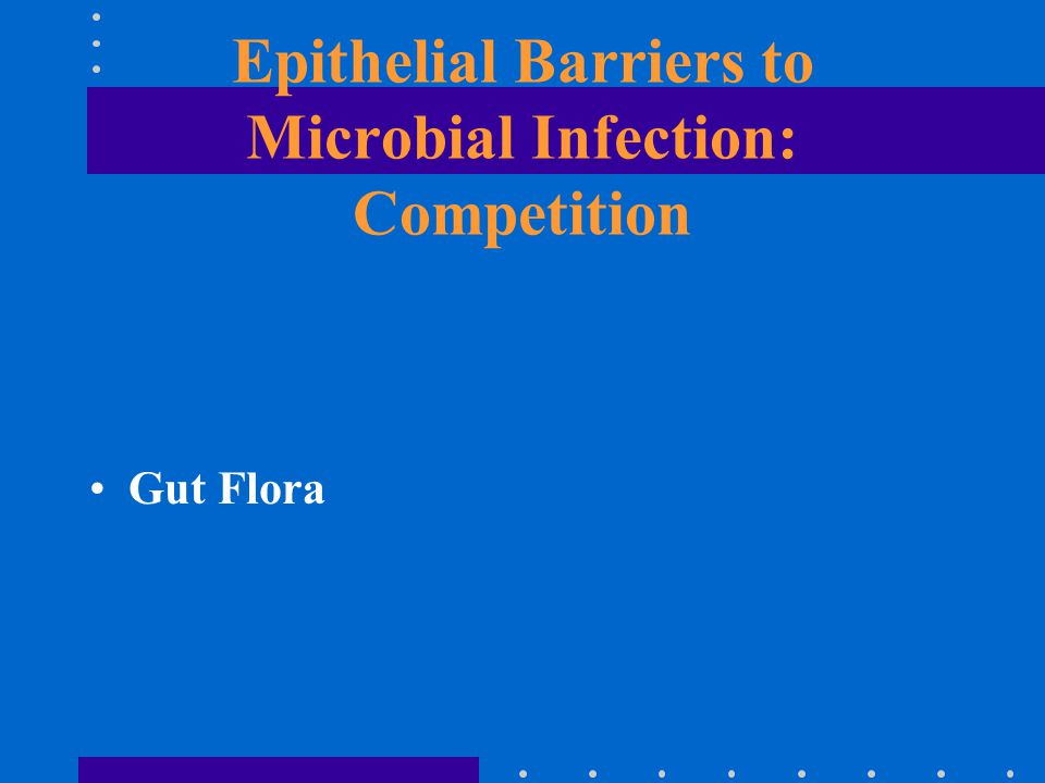 Epithelial Barriers to Microbial Infection: Competition Gut Flora