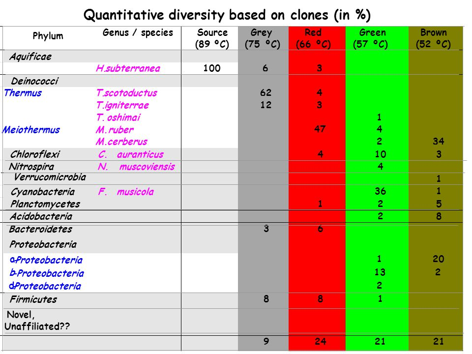 Quantitative diversity based on clones (in %)