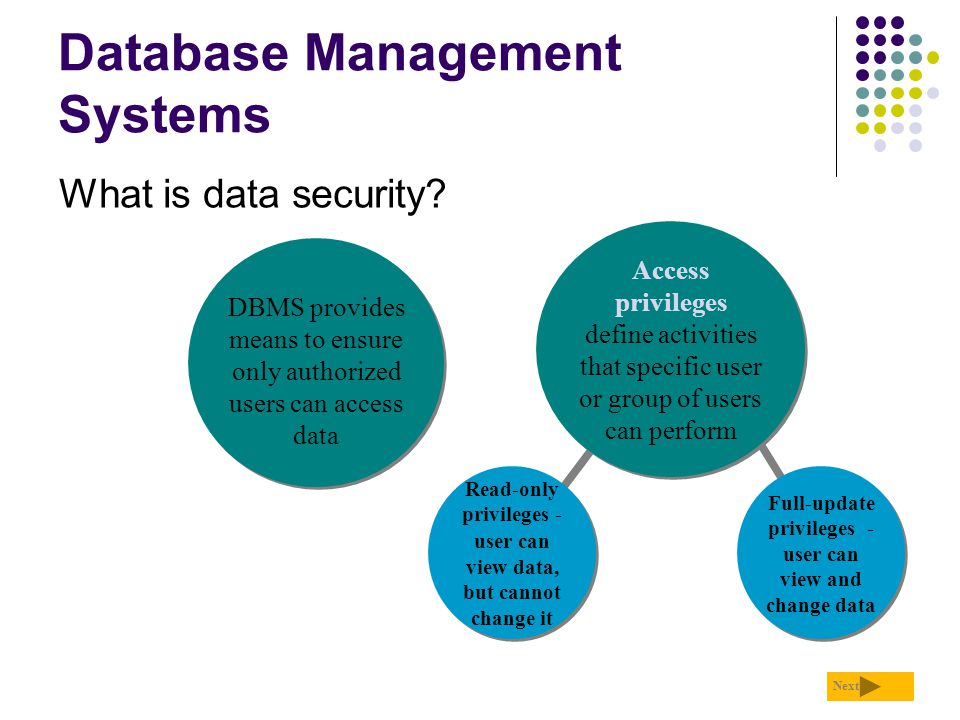 Database Management Systems What is data security? Next Read-only privileges - user can view data, but cannot change it Read-only privileges - user ca