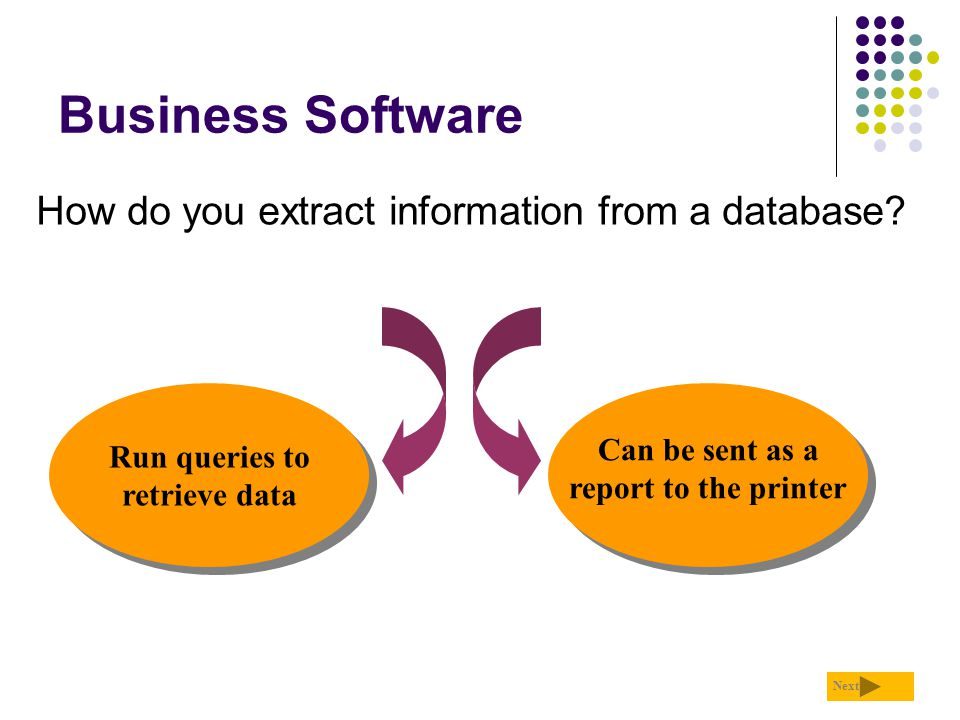Business Software How do you extract information from a database? Can be sent as a report to the printer Run queries to retrieve data Next