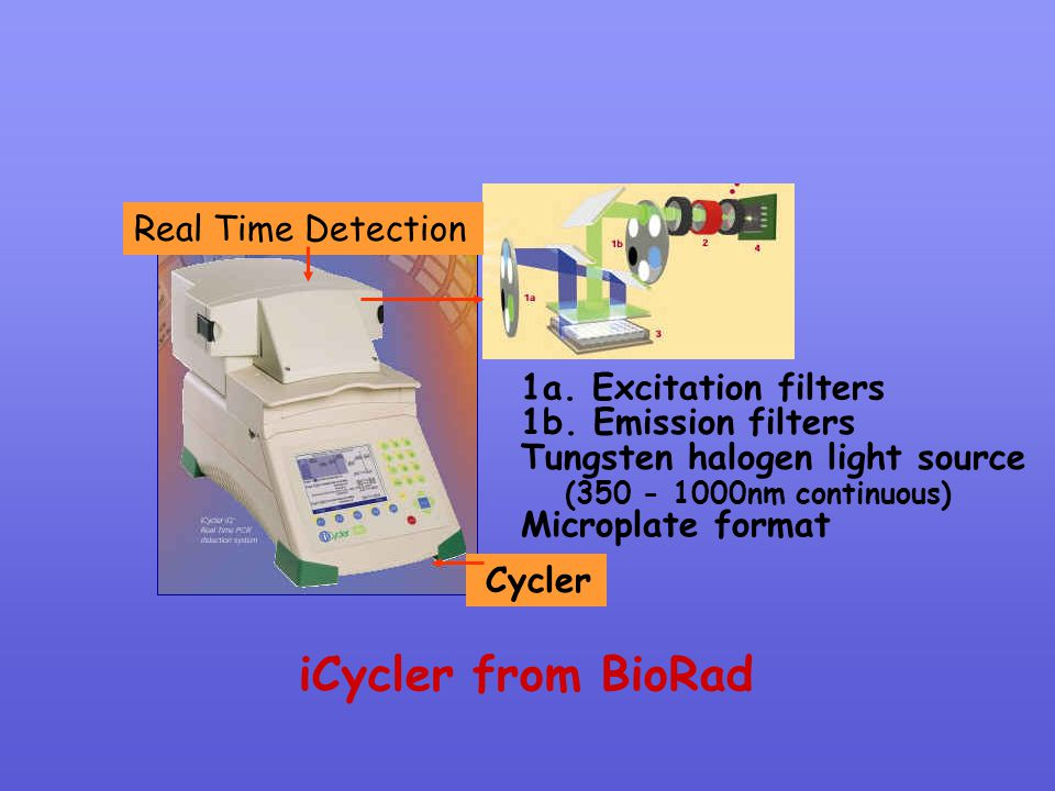 iCycler from BioRad 1a. Excitation filters 1b. Emission filters Tungsten halogen light source Cycler Real Time Detection Microplate format (350 - 1000
