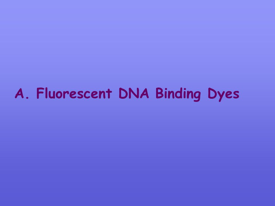 A. Fluorescent DNA Binding Dyes