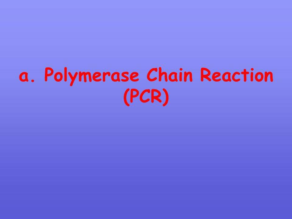 a. Polymerase Chain Reaction (PCR)