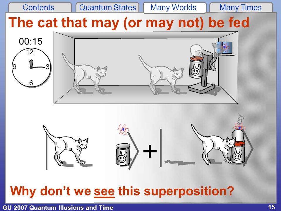 GU 2007 Quantum Illusions and Time Contents Quantum States Many Worlds Many Times 15 The cat that may (or may not) be fed 12 6 93 00:15 Why don't we see this superposition?