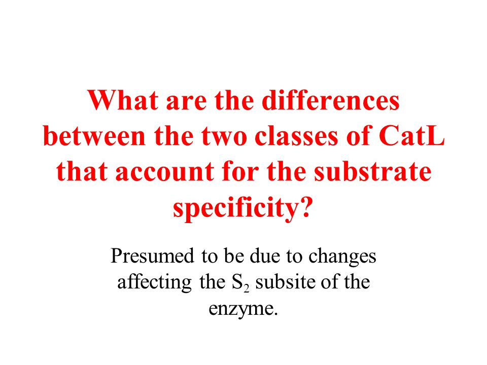 What are the differences between the two classes of CatL that account for the substrate specificity? Presumed to be due to changes affecting the S 2 s