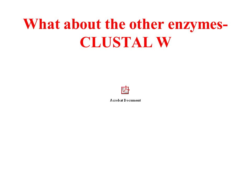 What about the other enzymes- CLUSTAL W