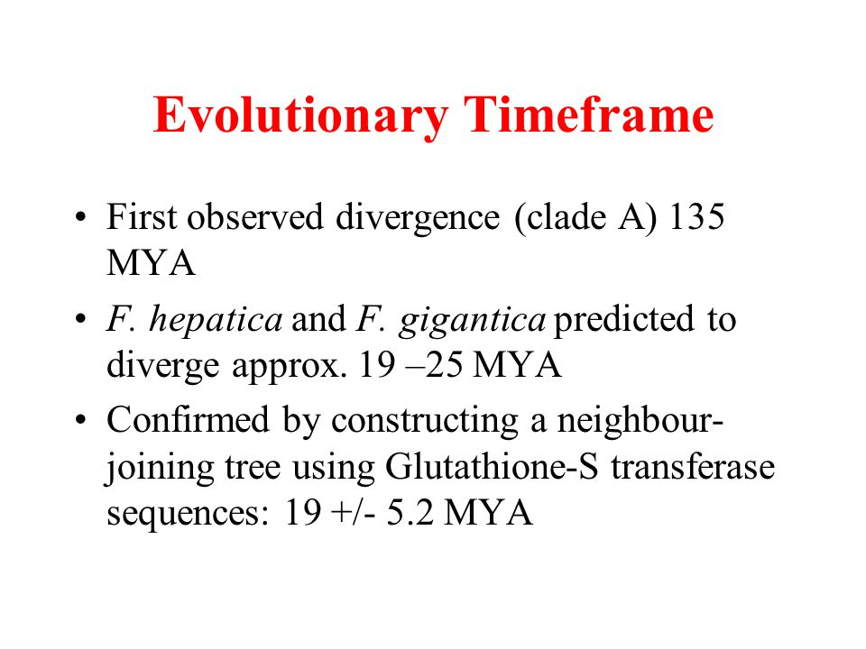Evolutionary Timeframe First observed divergence (clade A) 135 MYA F. hepatica and F. gigantica predicted to diverge approx. 19 –25 MYA Confirmed by c