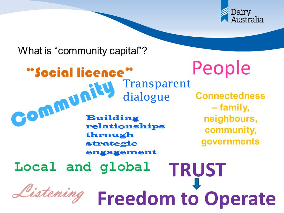 What is community capital .