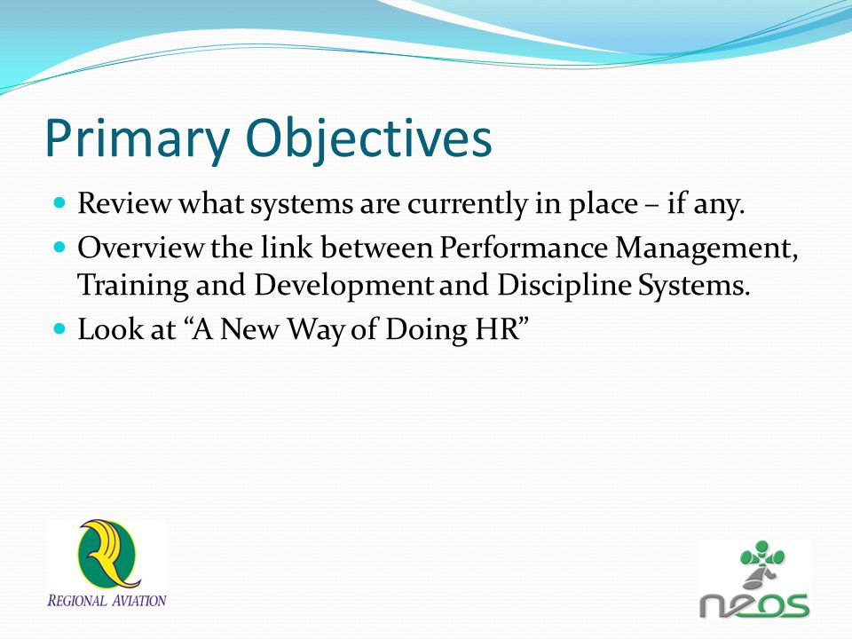Primary Objectives Review what systems are currently in place – if any. Overview the link between Performance Management, Training and Development and