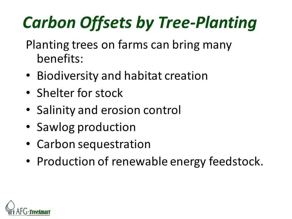 Carbon Offsets by Tree-Planting Planting trees on farms can bring many benefits: Biodiversity and habitat creation Shelter for stock Salinity and eros