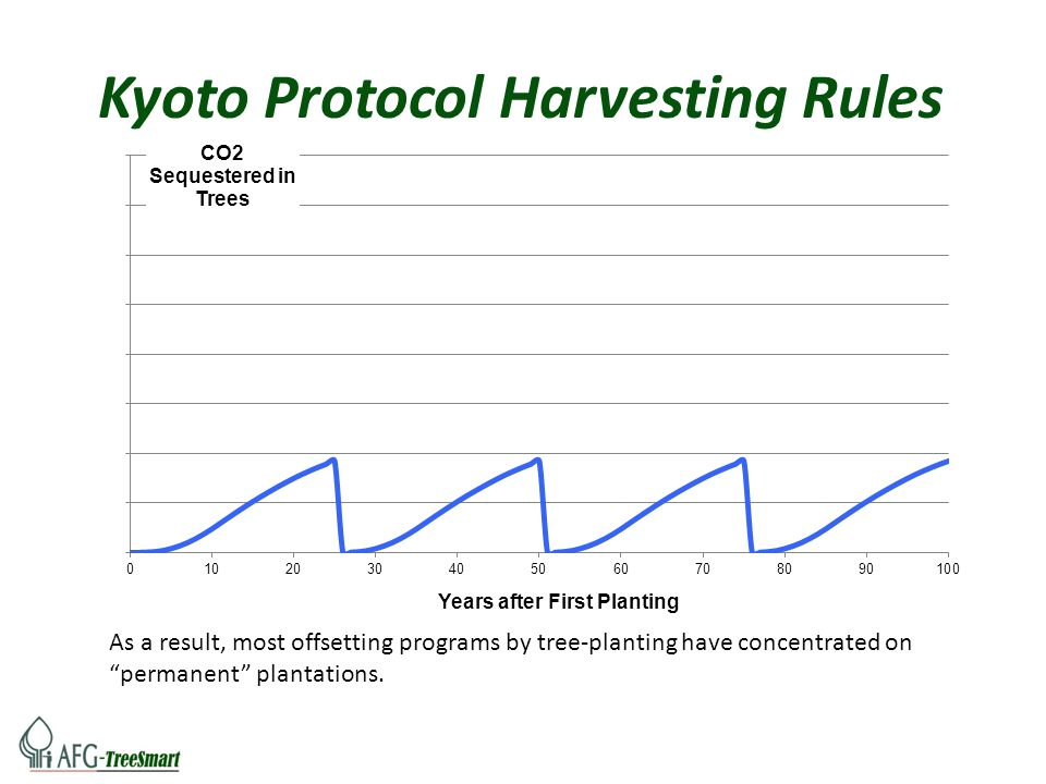 "As a result, most offsetting programs by tree-planting have concentrated on ""permanent"" plantations. Kyoto Protocol Harvesting Rules"