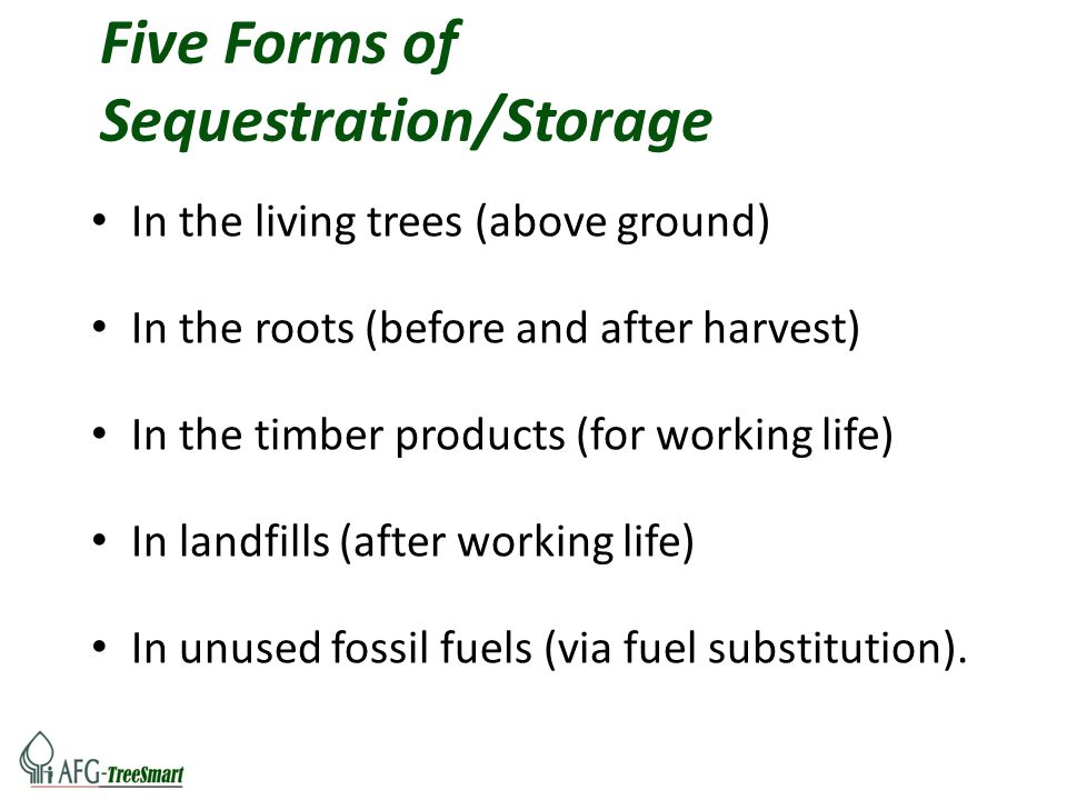 Five Forms of Sequestration/Storage In the living trees (above ground) In the roots (before and after harvest) In the timber products (for working lif