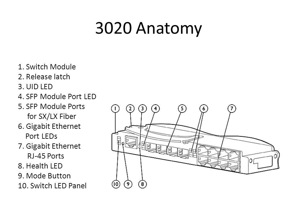 3020 Anatomy 1. Switch Module 2. Release latch 3. UID LED 4. SFP Module Port LED 5. SFP Module Ports for SX/LX Fiber 6. Gigabit Ethernet Port LEDs 7.