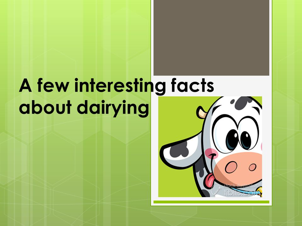 A few interesting facts about dairying