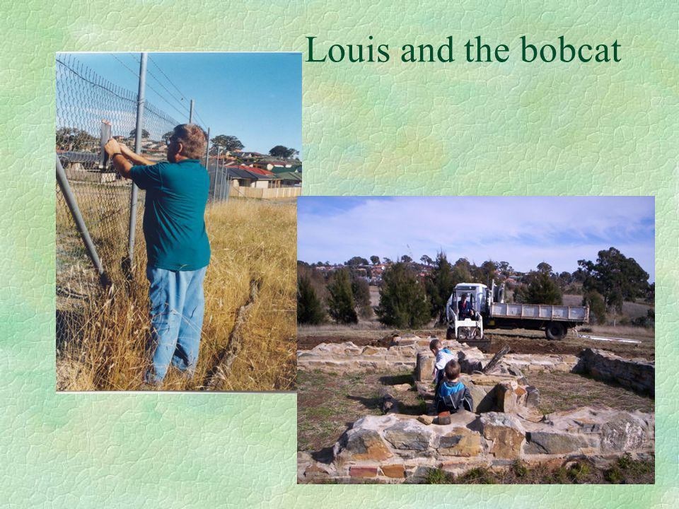 Louis and the bobcat