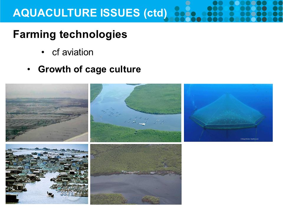 Farming technologies cf aviation Growth of cage culture AQUACULTURE ISSUES (ctd)